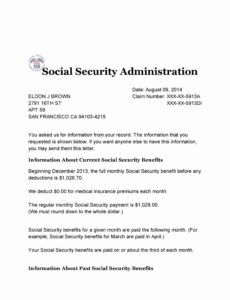 professional social security number verification letter