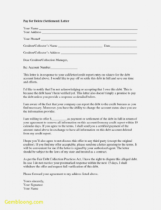 Printable Pay For Delete Letter Template Doc Example
