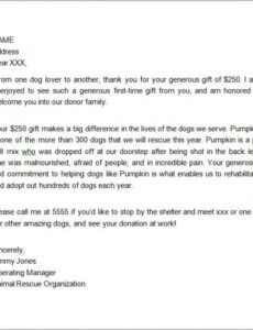 Free Corporate Donation Letter Template Doc